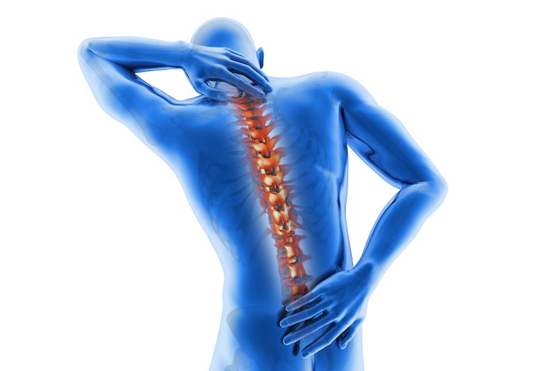 spine tb
