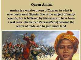 amina queen